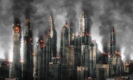 Shareholder Value in a Burning World