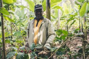 IMVO Werkt Alleen als Bedrijven Willen, Niet Enkel als Ze Moeten
