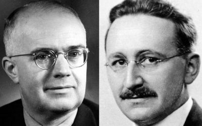 Free Market or Socialism: Have Economists Really Anything to Say?