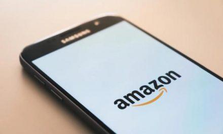 Amazon's Private Government