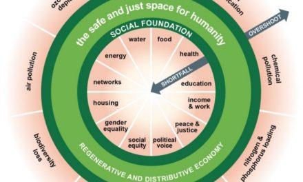 Donut-Economie Moet ook over Sociale Ondergrens Gaan