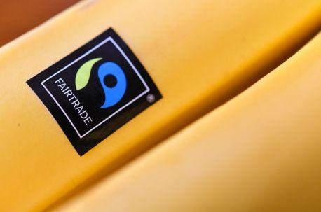 Keurmerken als Fairtrade en UTZ Geen Garantie voor Betere Omstandigheden Boer: 'Erg Weinig Bewijs'
