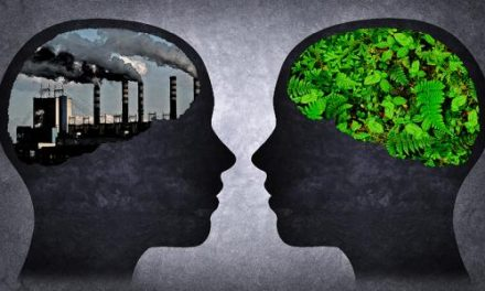 Economic Growth or Environmental Sustainability: Do We Have to Choose?