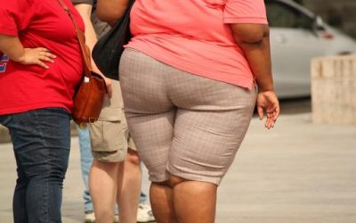 Is Capitalism Making Us Fat?