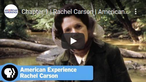 Rachel Carson & 'Silent Spring' (1962)