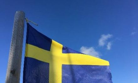 Lessons from Sweden in Sustainable Business