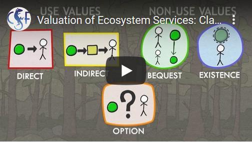 De waardebepaling van 'ecosysteemdiensten'